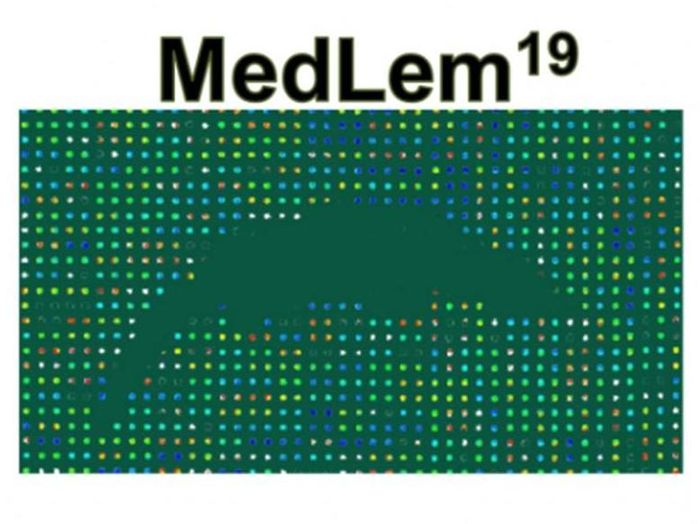 MedLem meeting 2019