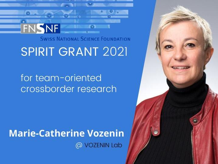 SPIRIT grant to Marie-Catherine Vozenin for collaborative research with INNN, Mexico