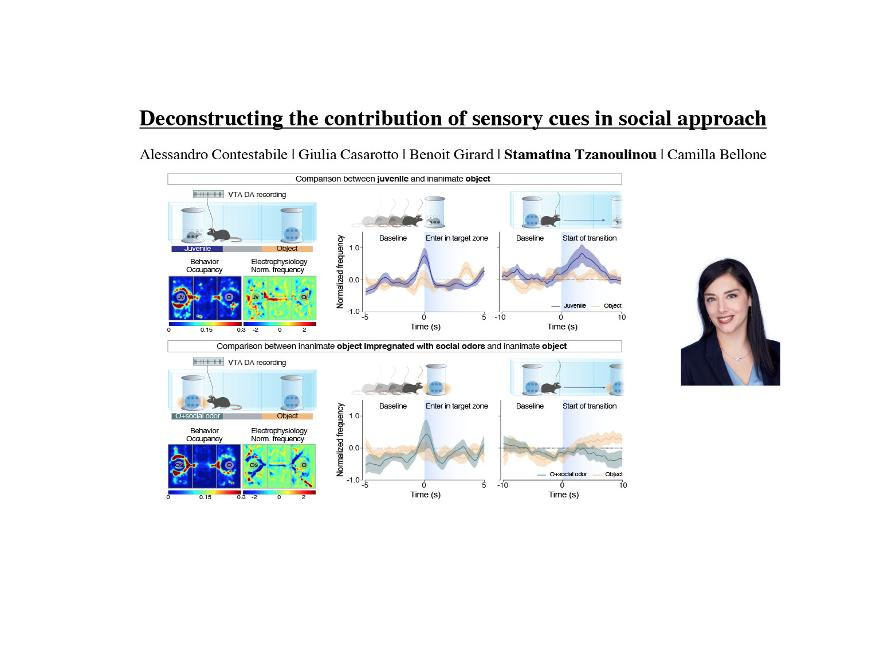 Deconstructing the contribution of sensory cues in social approach